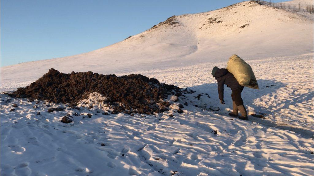 冬のモンゴルの仕事          冬の田舎の仕事